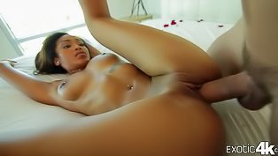 Ebony girl is getting banged